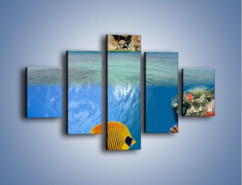 Obraz na płótnie – Podwodny świat na wyspie – pięcioczęściowy KN586W1