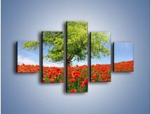 Obraz na płótnie – Cała łąka maków – pięcioczęściowy KN623W1
