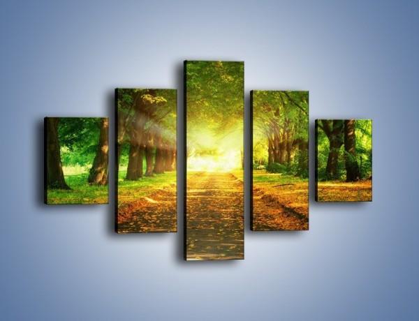 Obraz na płótnie – Drogą leśną do rezydencji – pięcioczęściowy KN636W1