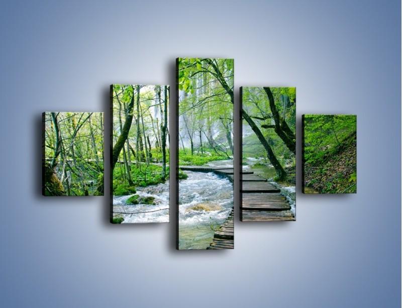 Obraz na płótnie – Drewniana kładką przez potok – pięcioczęściowy KN720W1