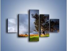 Obraz na płótnie – Burzowe chmury nad polaną – pięcioczęściowy KN748W1