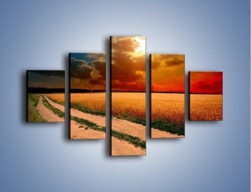 Obraz na płótnie – Zbożowa polana i jej cały urok – pięcioczęściowy KN776W1