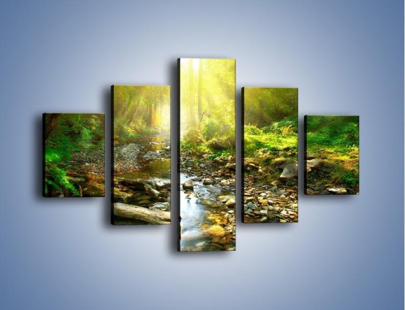 Obraz na płótnie – Kamiennym urwiskiem wśród potoku – pięcioczęściowy KN827W1