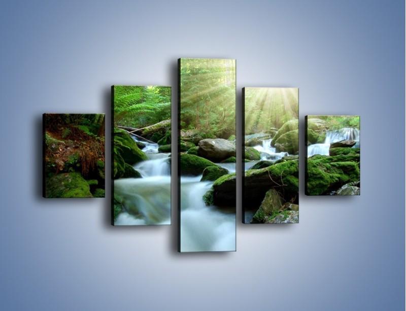 Obraz na płótnie – Silny potok w środku lasu – pięcioczęściowy KN861W1