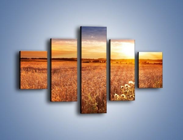 Obraz na płótnie – Zbożową polaną do celu – pięcioczęściowy KN865W1