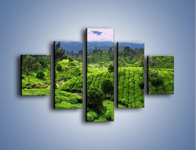 Obraz na płótnie – Rozległa zielona kraina – pięcioczęściowy KN872W1