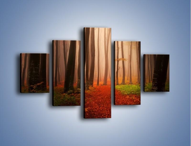 Obraz na płótnie – Las pełen tajemnic – pięcioczęściowy KN909W1
