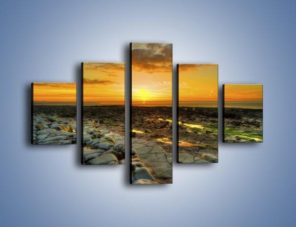 Obraz na płótnie – Ziemia wśród kamieni – pięcioczęściowy KN919W1