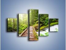 Obraz na płótnie – Bezpieczna droga przez las – pięcioczęściowy KN922W1