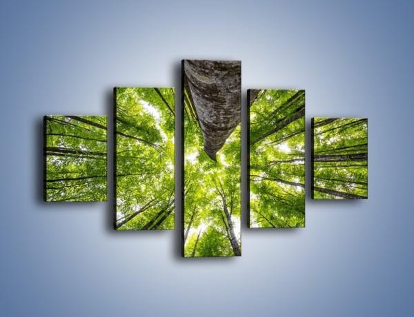 Obraz na płótnie – Świat widziany zielenią – pięcioczęściowy KN931W1