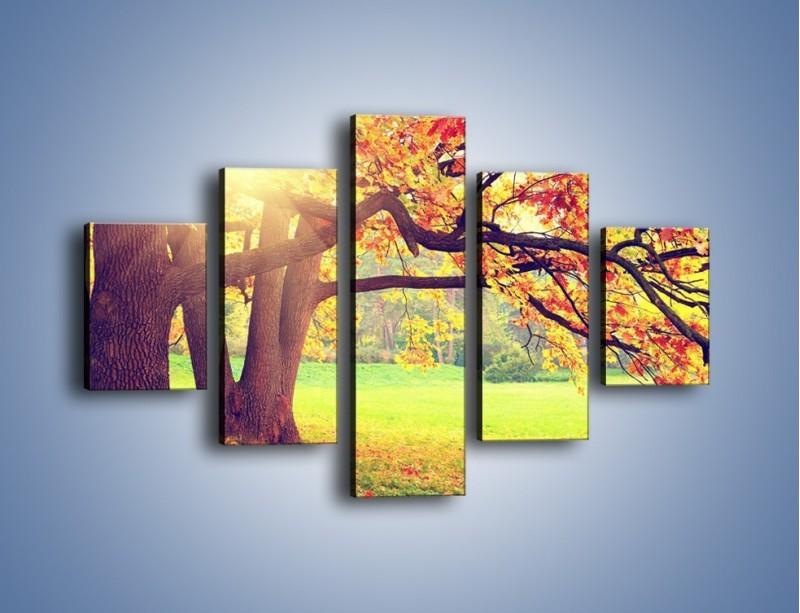 Obraz na płótnie – Jesienią w parku też jest pięknie – pięcioczęściowy KN967W1