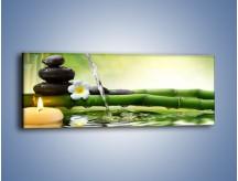 Obraz na płótnie – Bambus i źródło wody – jednoczęściowy panoramiczny K930