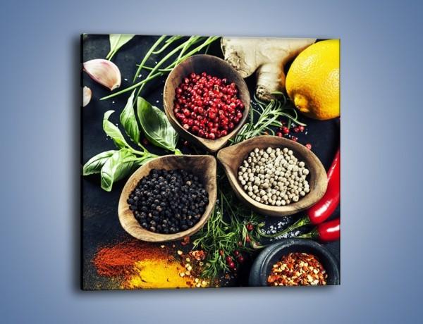 Obraz na płótnie – Przyprawy warzywa i owoce – jednoczęściowy kwadratowy JN639