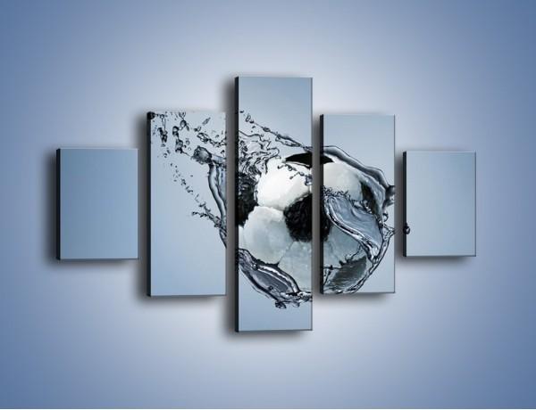 Obraz na płótnie – Piłka w wodnej skorupce – pięcioczęściowy O015W1