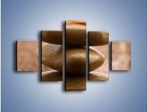 Obraz na płótnie – Delikatne piórko na twardym podłożu – pięcioczęściowy O215W1