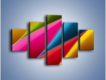 Obraz na płótnie – Idealna kolorowa kompozycja – pięcioczęściowy O219W1