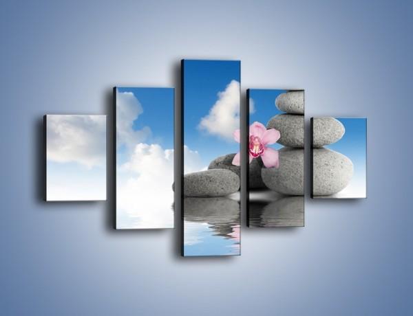 Obraz na płótnie – Różowy storczyk w chmurach – pięcioczęściowy O232W1