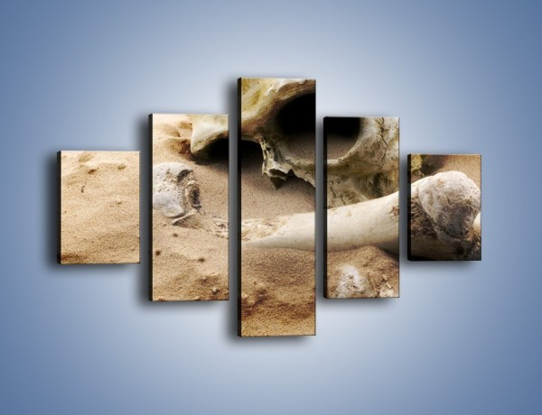 Obraz na płótnie – Starodawne wykopaliska – pięcioczęściowy O254W1