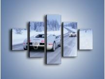 Obraz na płótnie – Bugatti Veyron w śniegu – pięcioczęściowy TM134W1