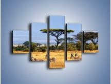 Obraz na płótnie – Antylopy w słonecznej afryce – pięcioczęściowy Z003W1