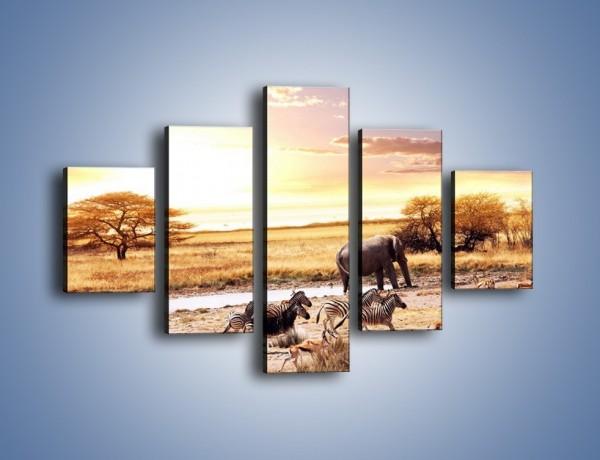 Obraz na płótnie – Zwierzęce stada na sawannie – pięcioczęściowy Z028W1
