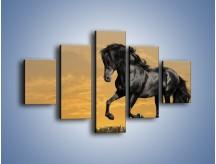 Obraz na płótnie – Bieg z koniem po polanie – pięcioczęściowy Z057W1