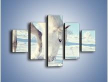 Obraz na płótnie – Arab w śnieżnym puchu – pięcioczęściowy Z144W1