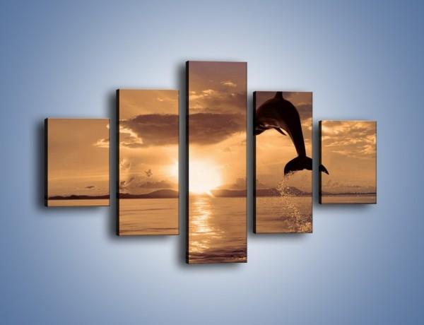 Obraz na płótnie – Z delfinem w stronę zachodzącego słońca – pięcioczęściowy Z170W1