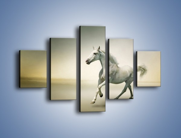 Obraz na płótnie – Samotny wieczór z białym koniem – pięcioczęściowy Z175W1