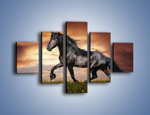 Obraz na płótnie – Mustang w galopie – pięcioczęściowy Z178W1