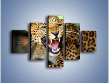 Obraz na płótnie – Jaguar z pazurem – pięcioczęściowy Z184W1