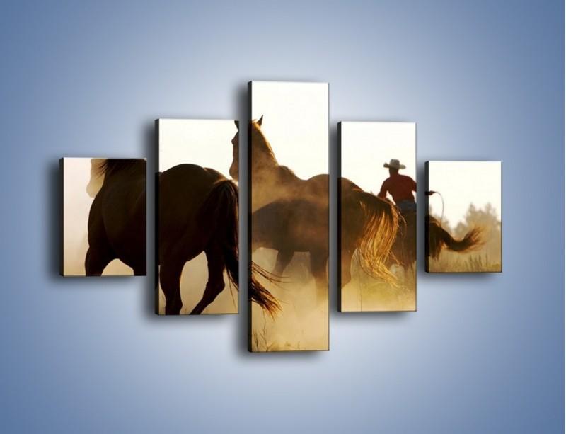 Obraz na płótnie – Cowboy wśród koni – pięcioczęściowy Z206W1