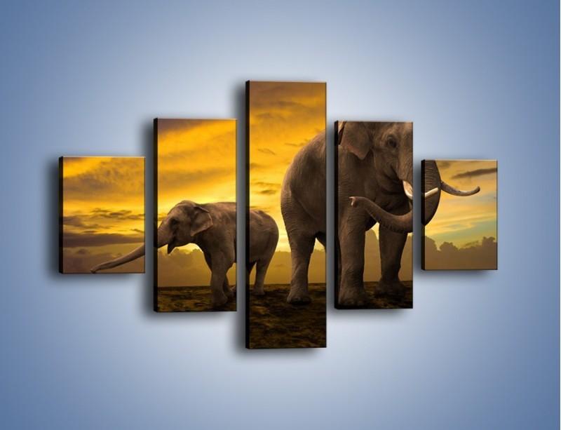 Obraz na płótnie – Ciekawość małego słonika – pięcioczęściowy Z212W1