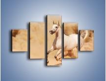 Obraz na płótnie – Klacz w tumanach piasku – pięcioczęściowy Z233W1