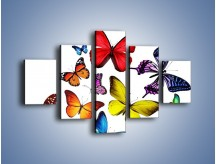 Obraz na płótnie – Kolorowo wśród motyli – pięcioczęściowy Z236W1