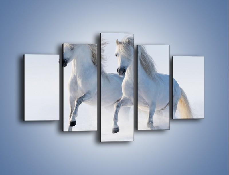 Obraz na płótnie – Gonitwa konna w bieli – pięcioczęściowy Z240W1