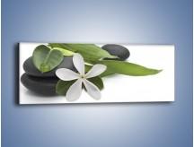 Obraz na płótnie – Artystyczna kompozycja z kwiatem – jednoczęściowy panoramiczny K968