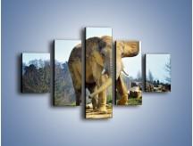 Obraz na płótnie – Ciężkie życie słonia – pięcioczęściowy Z273W1