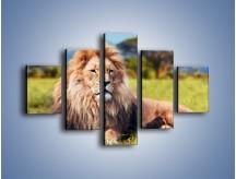 Obraz na płótnie – Dostojny lew na sawannie – pięcioczęściowy Z282W1