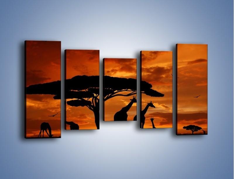 Obraz na płótnie – Żyrafy wieczorową porą – pięcioczęściowy GR266W2