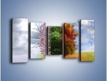 Obraz na płótnie – Cztery pory roku – pięcioczęściowy GR333W2