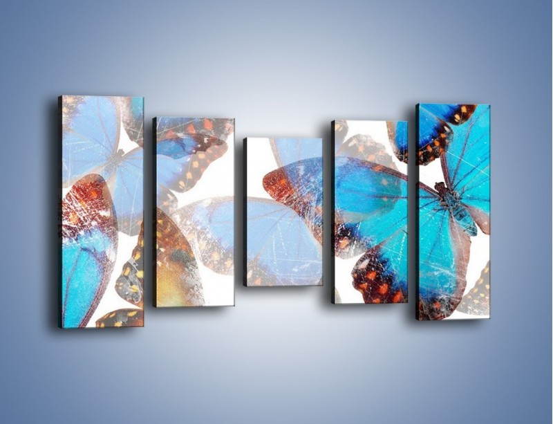 Obraz na płótnie – Motyl w niebieskim kolorze – pięcioczęściowy GR403W2