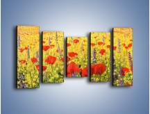Obraz na płótnie – Cała łąka maków – pięcioczęściowy GR480W2