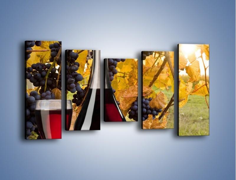 Obraz na płótnie – Wino wśród winogron – pięcioczęściowy JN007W2