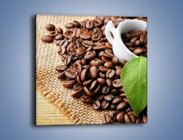 Obraz na płótnie – Liść na kawie – jednoczęściowy kwadratowy JN688