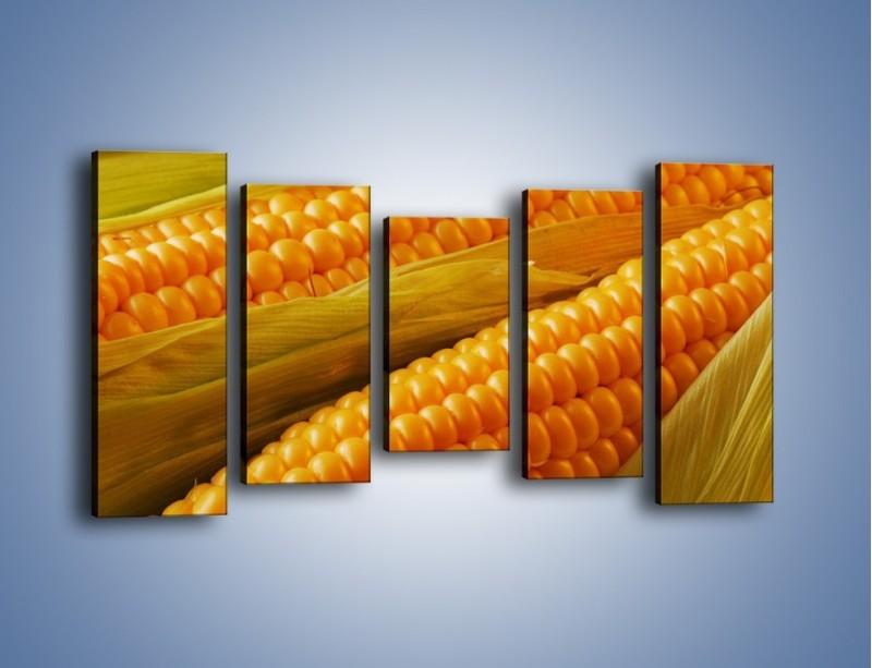 Obraz na płótnie – Kolby dojrzałych kukurydz – pięcioczęściowy JN046W2