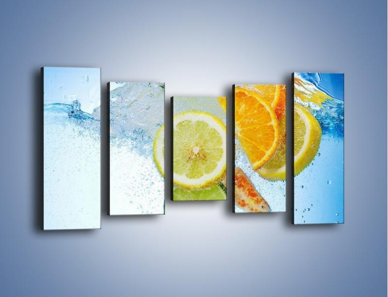 Obraz na płótnie – Zatopione plastry owoców – pięcioczęściowy JN057W2