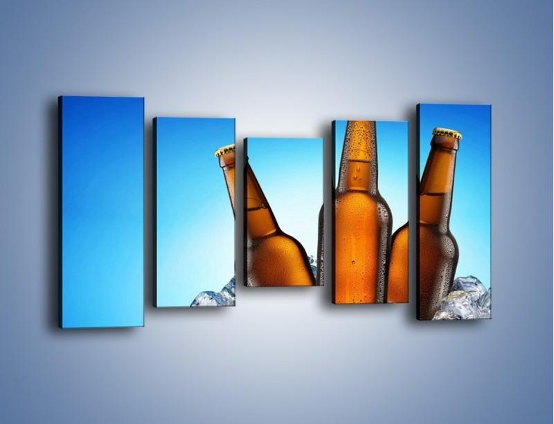 Obraz na płótnie – Szron na butelkach piwa – pięcioczęściowy JN075W2