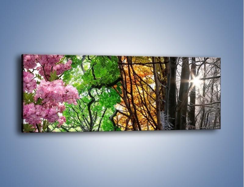 Obraz na płótnie – Drzewa w różnych kolorach – jednoczęściowy panoramiczny KN037