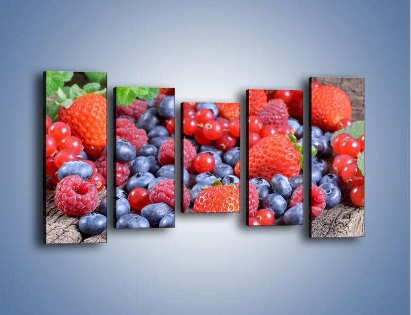 Obraz na płótnie – Owoce z działki – pięcioczęściowy JN422W2
